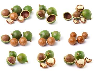 Macadamianötter är nyttigt och gott!
