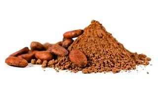 Kakaopulver och bönor