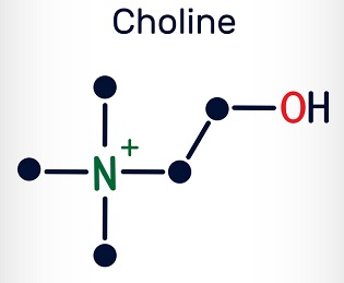 Kemisk struktur över Kolin (eng. Choline)